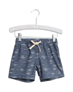 Swim Shorts Eli Bering Sea