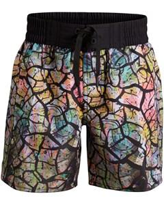 Boys Board Shorts, Bb Drylands, 1-p Black