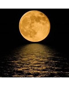 Måne Glittrar I Sjön