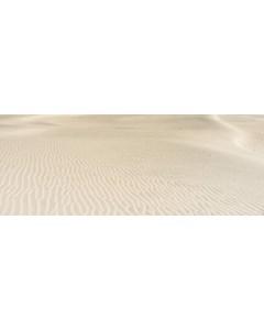 Sanddynor I Öknen