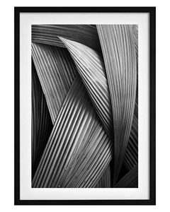 Poster Abstract Palm Tree