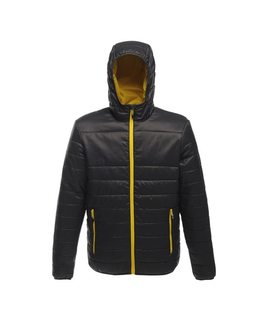 Regatta Regatta Standout Mens Acadia Padded Warmloft Jacket
