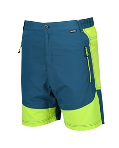 Regatta Mens Sungari Shorts