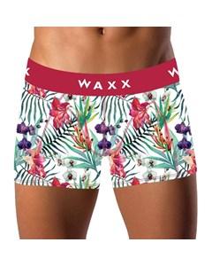 Waxx Panama