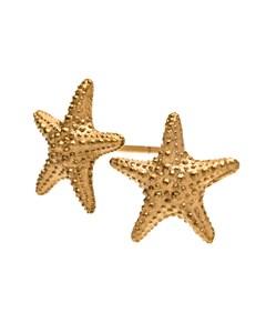 Starfish Studs Gold