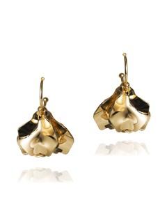 Invicta Earrings Gold