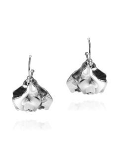 Invicta Earrings Silver